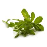venta-de-suplemento-de-alfalfa